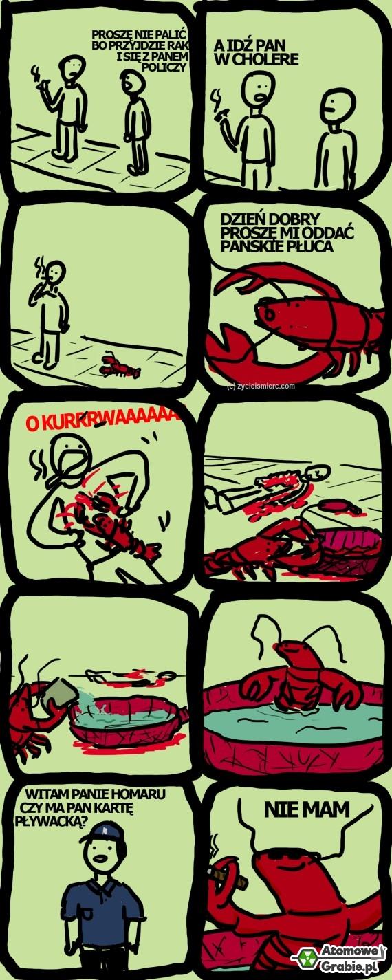 Pan homaru