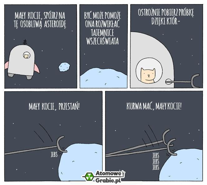 Wysłać kota w kosmos